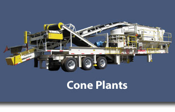 High Production Cone Plants